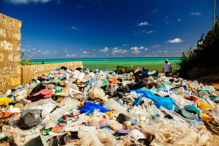 浜辺に大量に山積するプラスチックゴミ 出典:WWFジャパン