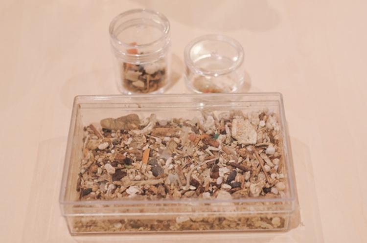 マイクロプラスチックの例(プラスチックゴミ) 出典:JEAN